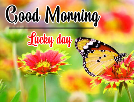 152+ Good Morning Good Luck Wishes Images HD Download