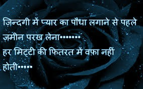 Hindi Bewafa Shayari Images