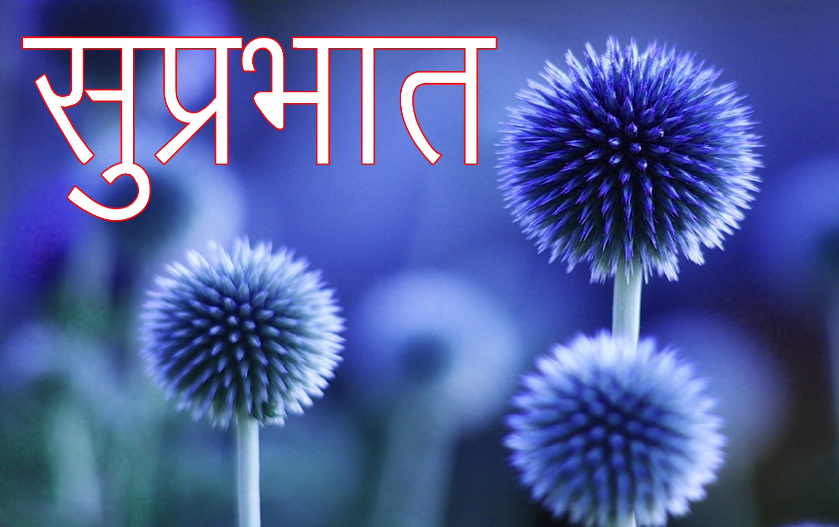 Latest-Suprabhat-Images-In-Hindi-14