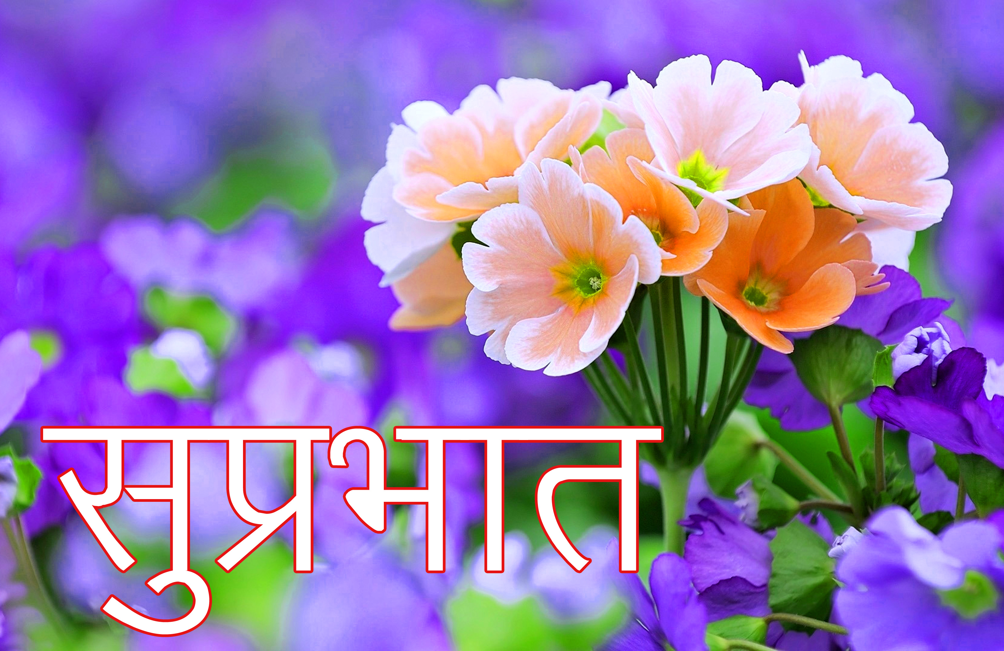 Latest-Suprabhat-Images-In-Hindi-15