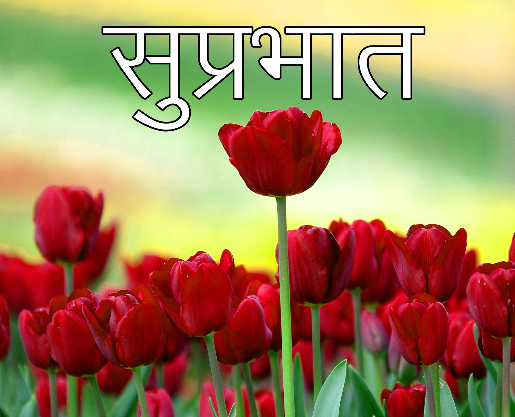 Latest-Suprabhat-Images-In-Hindi-16