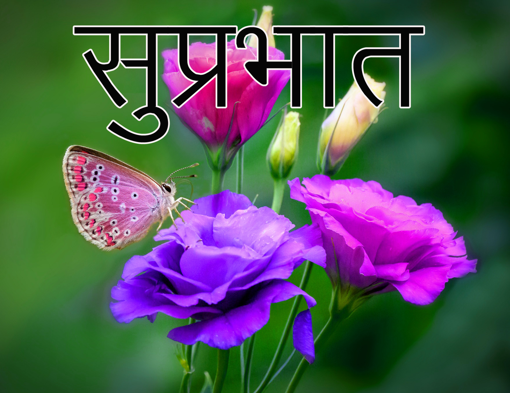 Latest-Suprabhat-Images-In-Hindi-24