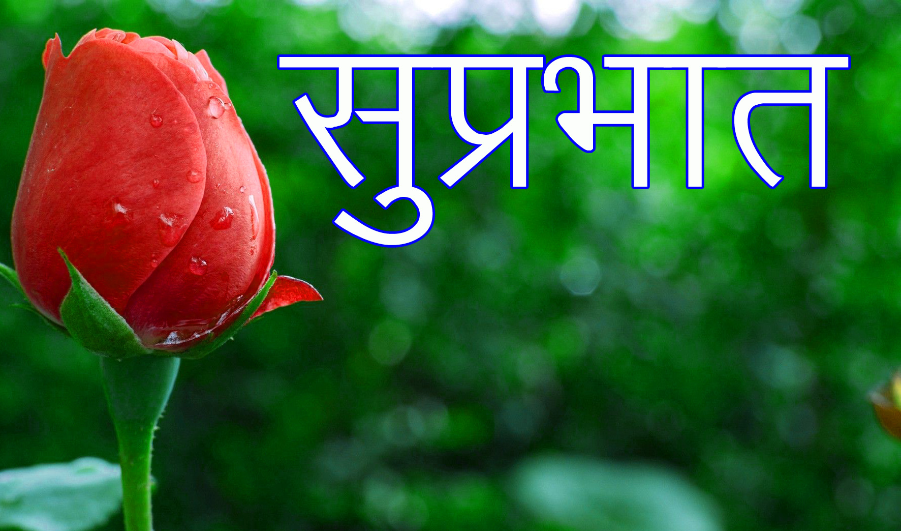 Latest-Suprabhat-Images-In-Hindi-6