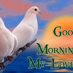 Beautiful Good Morning Images HD Collection