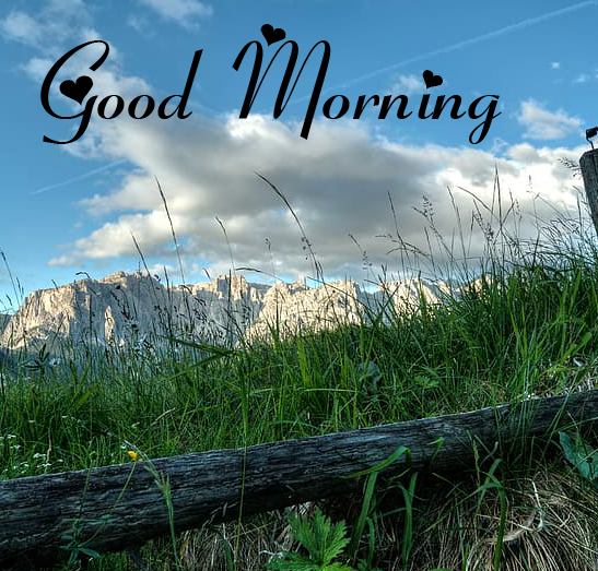 Friend Good Morning Wallpaper