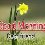 483+ Good Morning Images Wallpaper Pics Photo HD For Gf