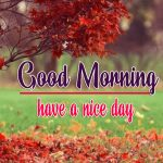 967+ Beautiful Good Morning Pics Download