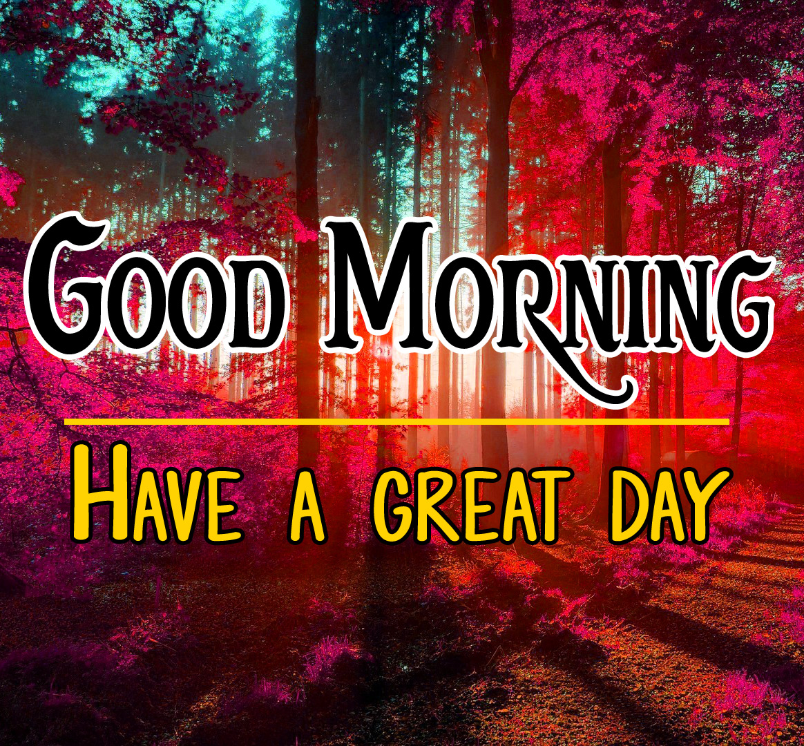 Good Morning Images Wallpaper Pics Download Free