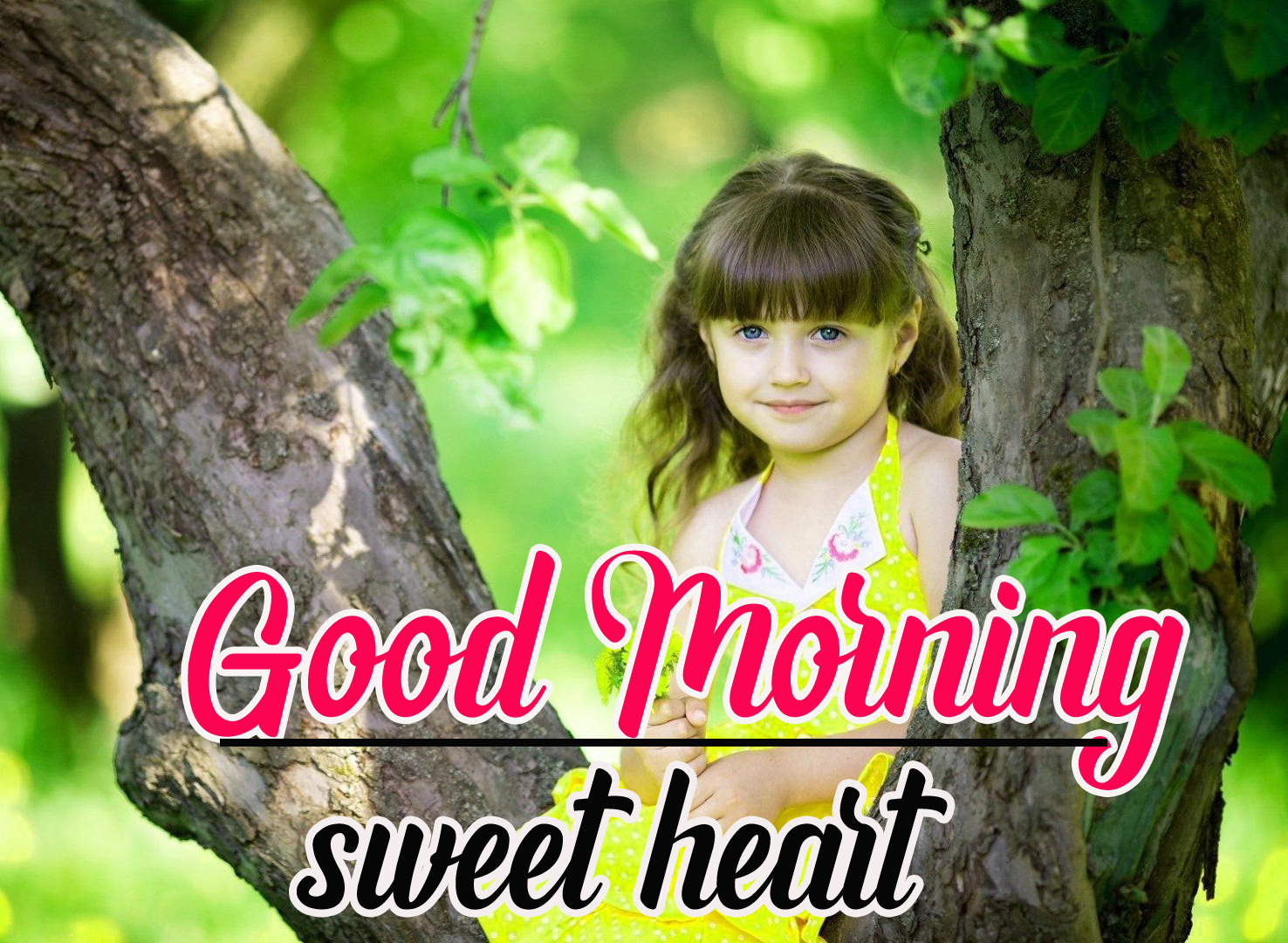 Beautiful Good Morning Images Pictures Wallpaper Free