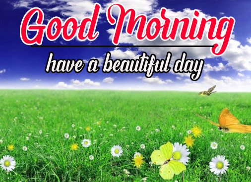 Best Sweet 1080p Good Morning Images Pic Download In HD
