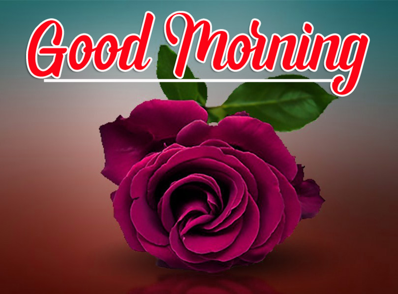 Best Sweet 1080p Good Morning Images Photo Wallpaper Free Download