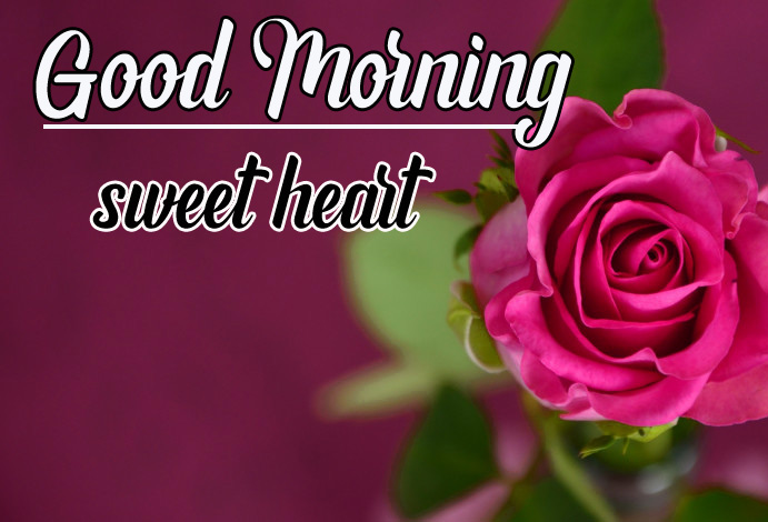 Best Sweet 1080p Good Morning Images Pics Wallpaper Free