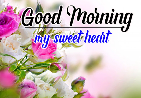 Best Sweet 1080p Good Morning Images Wallpaper Free