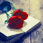 Whatsapp Profile Images Wallpaper With Rose