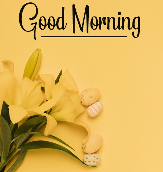 k Good Morning Pictures Free