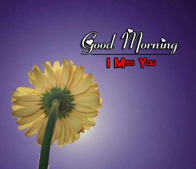 Free BEST Good Morning Images Wallpaper