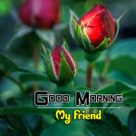 Free Best HD Good Morning Wishes Images Download