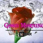 Free Best HD Good Morning Wishes Pics Images