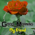 Free Best HD Good Morning Wishes Wallpaper Free