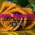 Free Best HD Good Morning Wishes Wallpaper HD