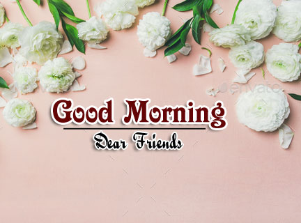 Free Good Morning Images Wallpaper Download Free