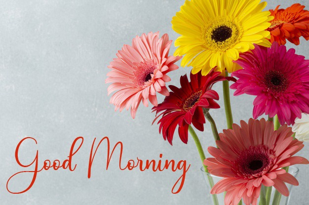 Free New Good Morning Good Morning Images Download