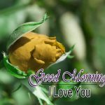 New Free Best HD Good Morning Wishes pics Download