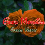 New Top Free Best HD Good Morning Wishes Pics Download