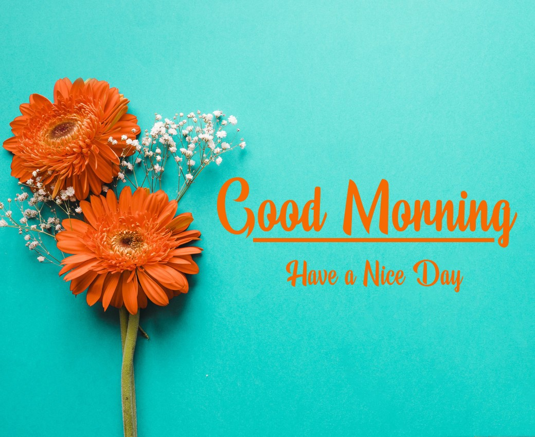New Top Free Good Morning Images Free