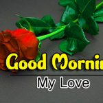 Red Rose Best HD Good Morning Wishes Images Download
