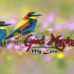 bird good morning images pictures hd