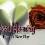 new rose Good Morning Images pics hd