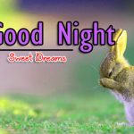 HD Good Night Free Wallpaper