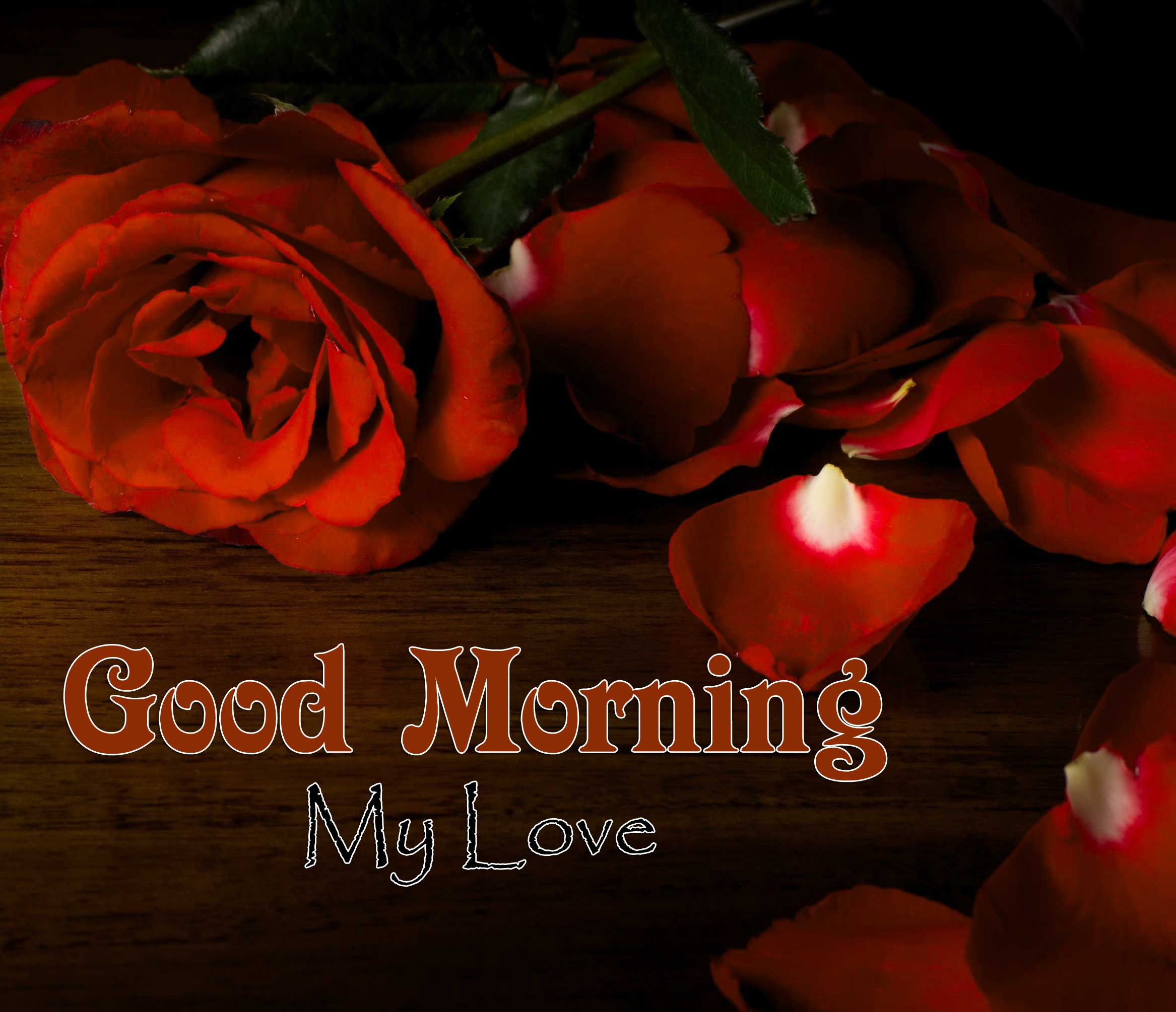 Cute Good Morning Images Hd Free