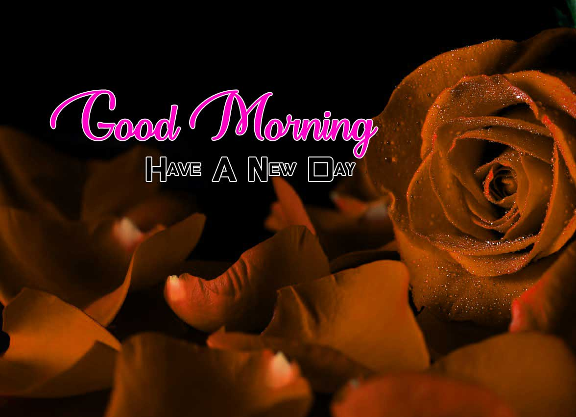 New Good Morning Free Download