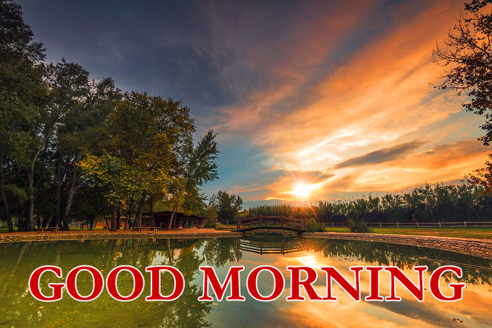 323 Nature Good Morning Images Hd Free Download