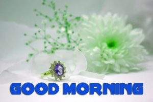 Latest Good Morning Pics Photo Images HD Download
