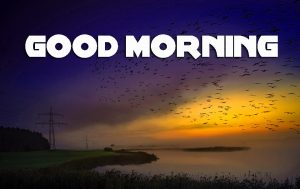 Latest Good Morning Pics Photo Images HD