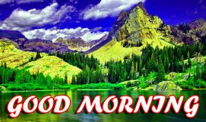 Best Latest Good Morning Pictures Images Photo Free HD