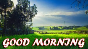 Best Latest Good Morning Photo Images Pictures HD For Facebook