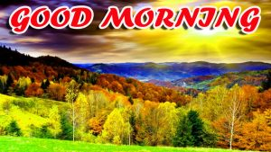 Best Latest Good Morning Images Pictures Photo HD Download