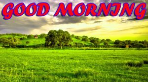 Best Latest Good Morning Pics Images Photo Download For Facebook