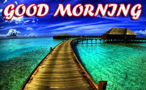 Best Latest Good Morning Photo Images Pictures Free HD