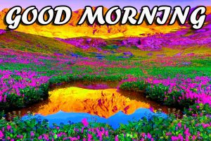Best Latest Good Morning Photo Pictures Images HD