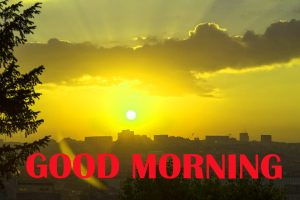 Amazing Good Morning Photo Images Wallpaper HD Download