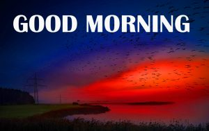 Amazing Good Morning Photo Pictures Images HD