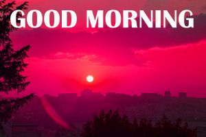 Amazing Good Morning Photo Images Pictures Free HD