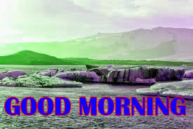 Amazing Good Morning Photo Images Pictures For Whatsapp