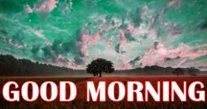 Amazing Good Morning Photo Pictures Images For Facebook