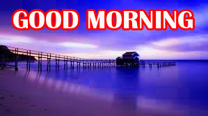 Amazing Good Morning Photo Pics Images For Facebook